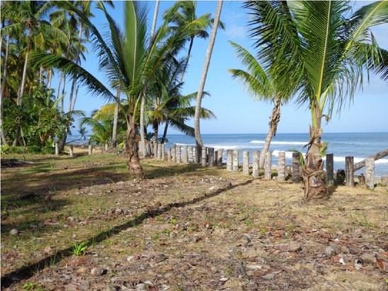 Coson, Samana - DOM (photo 5)