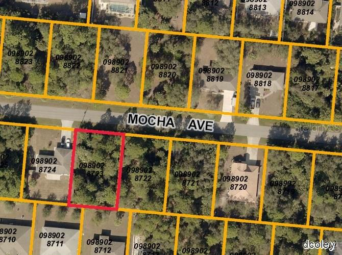 Mocha Ave, North Port, FL - USA (photo 1)