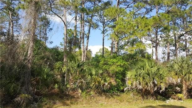 Landry Ave, North Port, FL - USA (photo 1)