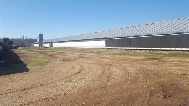 Farm, Broilers - Decatur, AR (photo 5)