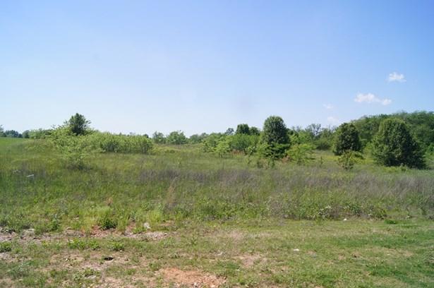 Development Potential - Bentonville, AR (photo 3)