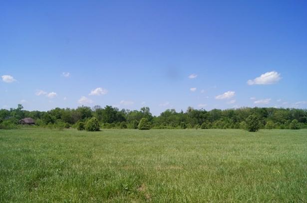 Commercial Land - Bentonville, AR (photo 4)