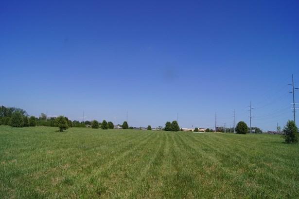 Commercial Land - Bentonville, AR (photo 5)