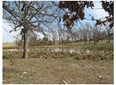 19183 Combs Bell  Rd , Elkins, AR - USA (photo 1)