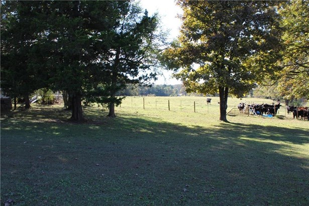 19183 Combs Bell  Rd , Elkins, AR - USA (photo 5)