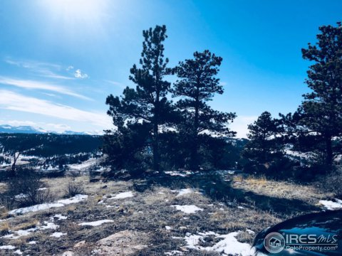 Vacant Land/Lots - Livermore, CO (photo 1)