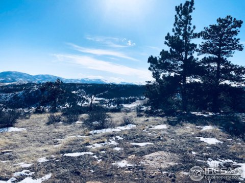 Vacant Land/Lots - Livermore, CO (photo 2)