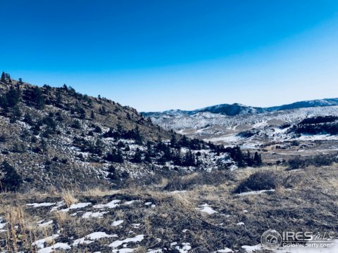 Vacant Land/Lots - Livermore, CO (photo 4)