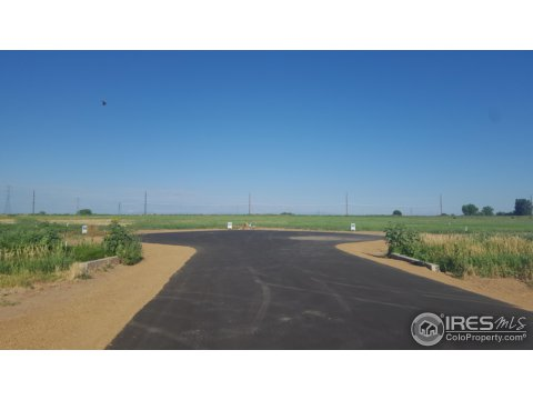 Vacant Land/Lots - Fort Lupton, CO