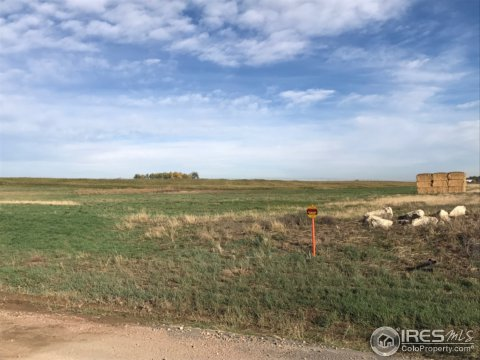 Vacant Land/Lots - Kersey, CO (photo 3)