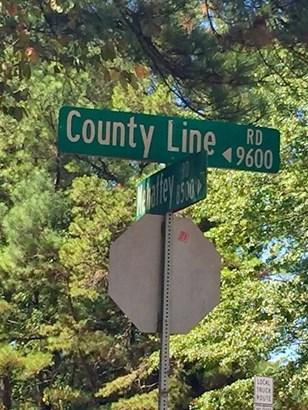 9600 County Line Road, Midland, GA - USA (photo 2)