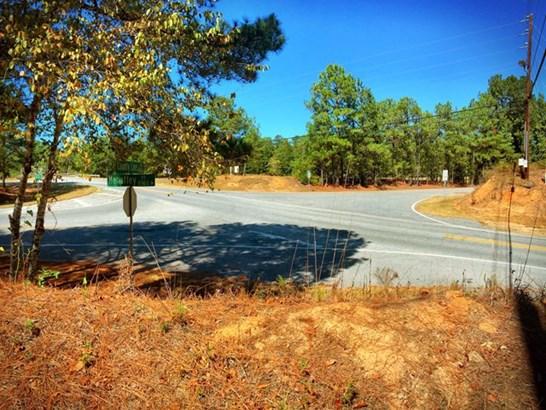 9600 County Line Road, Midland, GA - USA (photo 3)