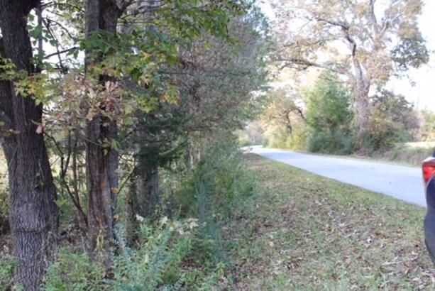 Tract 2b Salem Road, Pine Mountain, GA - USA (photo 3)