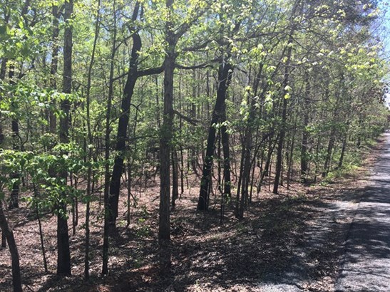 Lot 13 Juniper Trail, Waverly Hall, GA - USA (photo 5)
