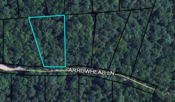 Lot 4 Arrowhead Lane, Waverly Hall, GA - USA (photo 2)