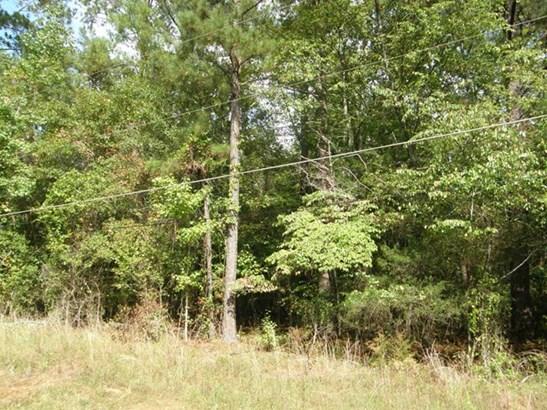 0 Tall Wood Drive, Pine Mountain, GA - USA (photo 3)