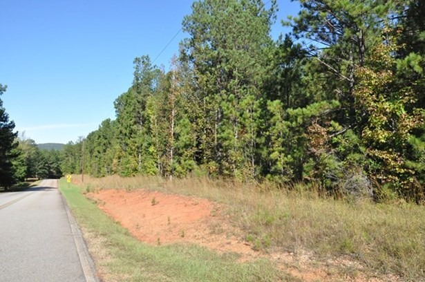 0 Brown Creek Road, Shiloh, GA - USA (photo 3)
