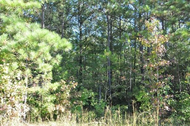 0 Brown Creek Road, Shiloh, GA - USA (photo 4)