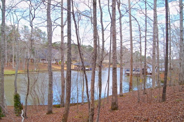Lot 121 Lee Rd 2117, Salem, AL - USA (photo 1)