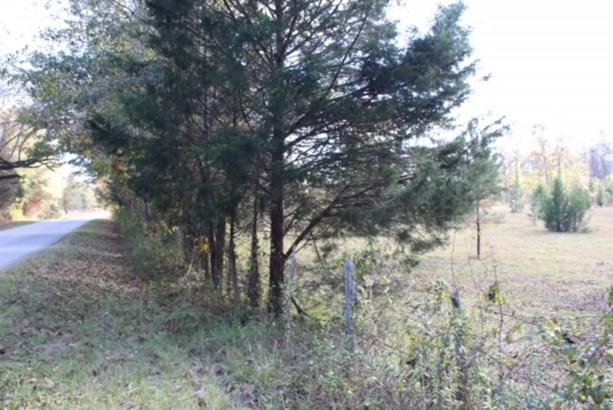 Tract 2a Salem Road, Pine Mountain, GA - USA (photo 3)