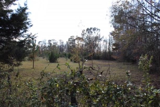 Tract 2a Salem Road, Pine Mountain, GA - USA (photo 4)
