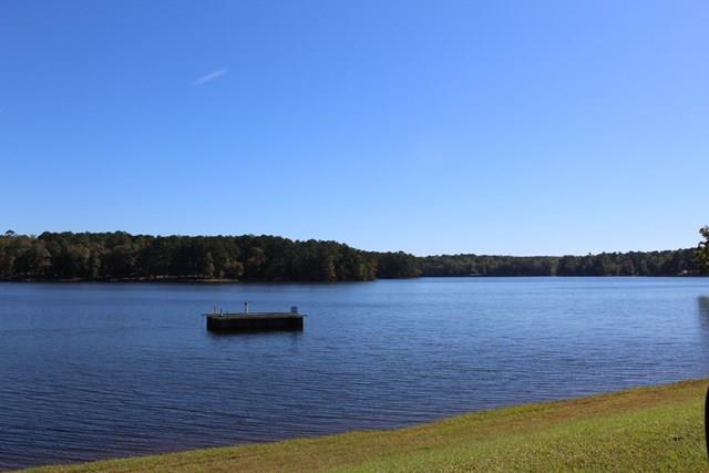 Lot 128 Piedmont Lake Road, Pine Mountain, GA - USA (photo 2)