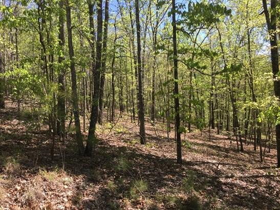Lot 12 Juniper Trail, Waverly Hall, GA - USA (photo 1)