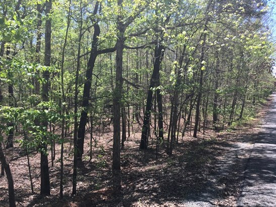 Lot 13 Juniper Trail, Waverly Hall, GA - USA (photo 5)