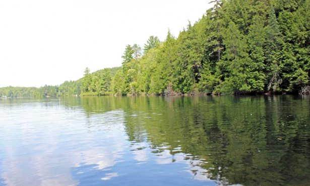 Rg De La Rivière-aux-écorces, Saint-alexis-des-monts, QC - CAN (photo 3)