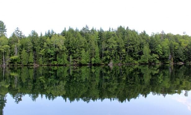 Rg De La Rivière-aux-écorces, Saint-alexis-des-monts, QC - CAN (photo 5)