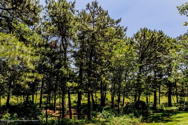 Detached,Ranch, Adult Community,Detached - Lakewood, NJ (photo 5)