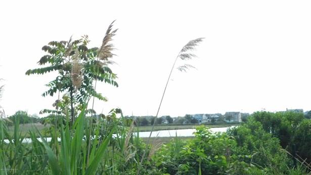 Residential Land - Bay Head, NJ (photo 4)