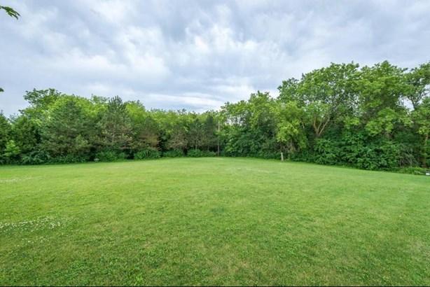 Woodland surrounds LG Back Yard (photo 4)