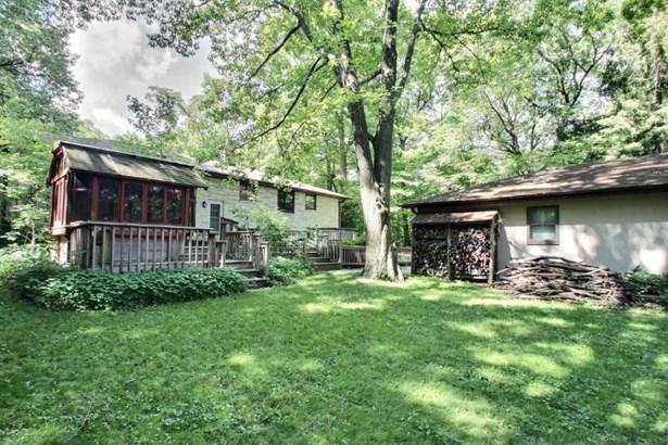 back yard (photo 4)