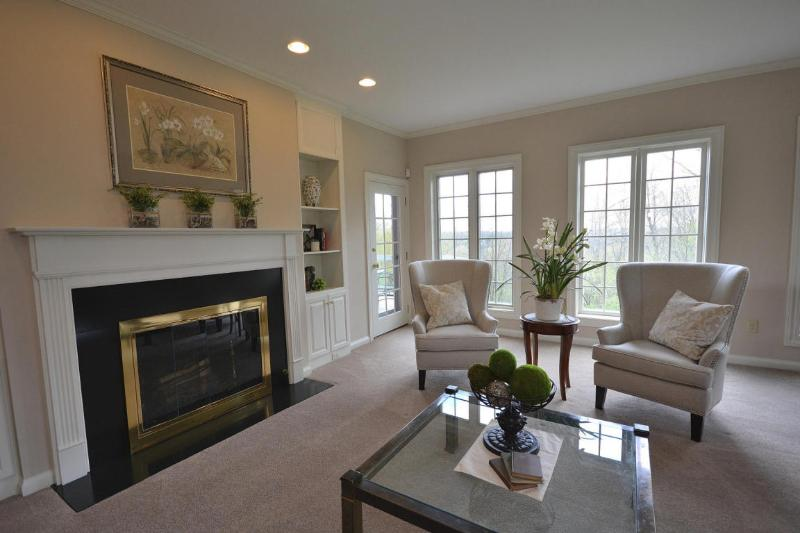 Formal Living Fireplace (photo 4)