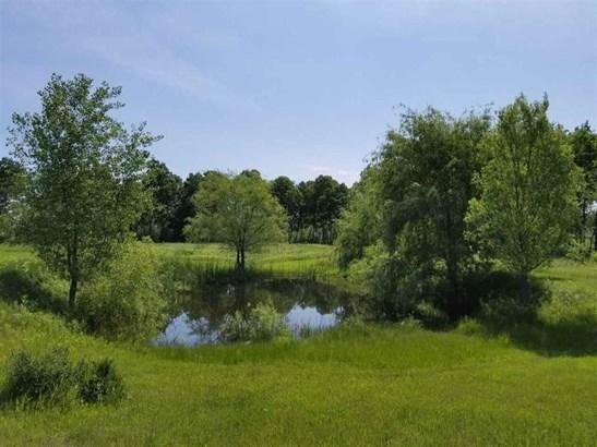 Pond (photo 5)