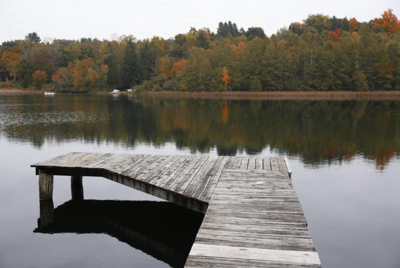 Views of the lake (photo 2)