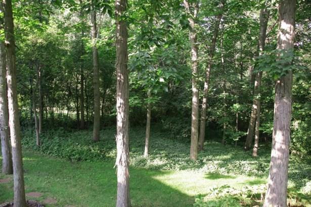 Beautiful backyard (photo 2)