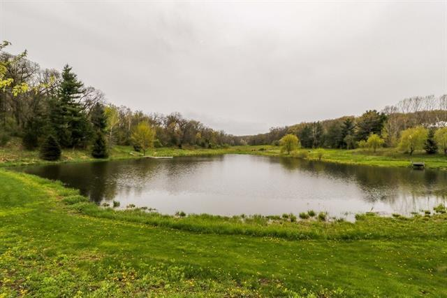 Pond (photo 4)