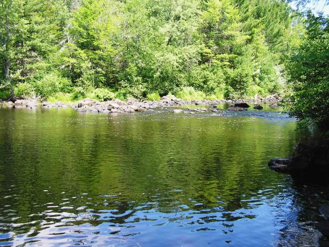 Pelican River (photo 4)