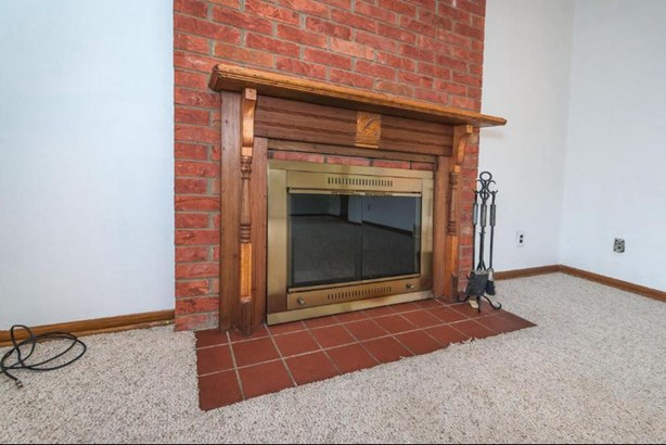 Masonry Fireplace (photo 4)