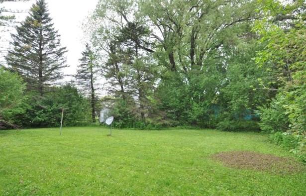 Yard (photo 4)