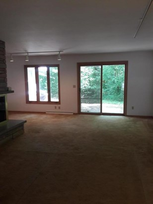 Fireplace that extends to lower level (photo 5)