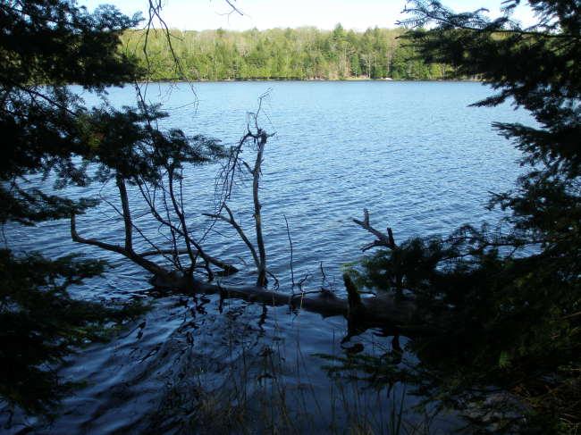 612 Acre Lake, 25' Deep (photo 3)