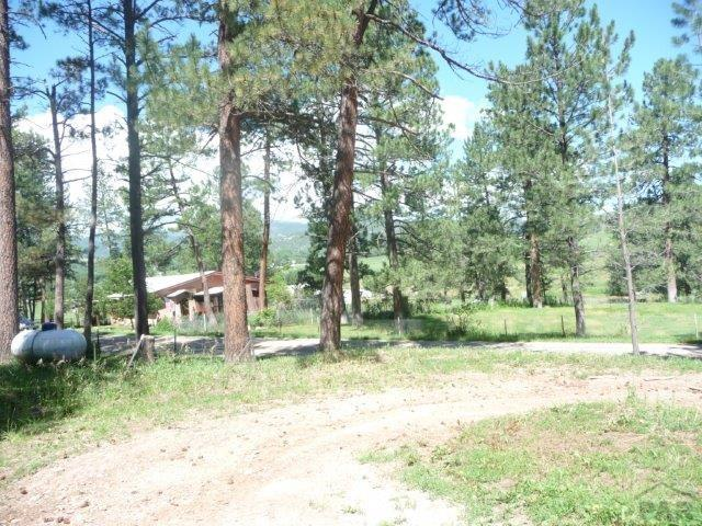 Ranch, Single Family - Beulah, CO (photo 5)