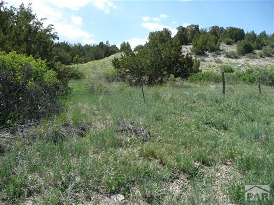 Single Family Land - Pueblo, CO (photo 1)
