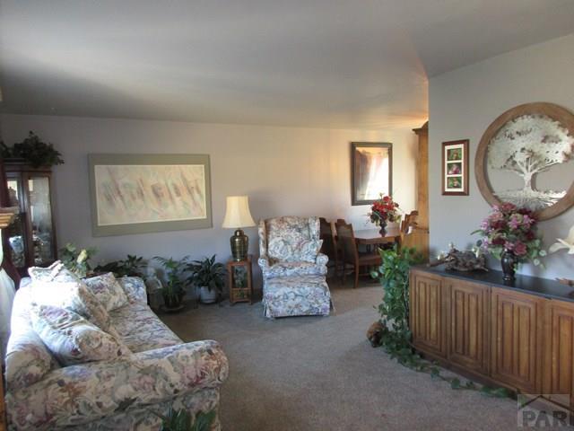 4 Level, Single Family - Pueblo, CO (photo 2)