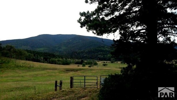 Single Family Land - Rye, CO (photo 2)