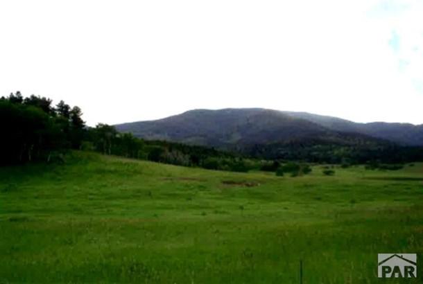 Single Family Land - Rye, CO (photo 3)