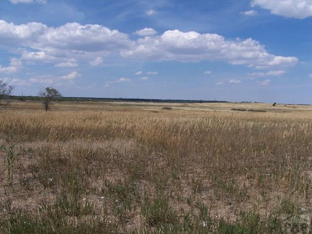 Single Family Land - Colorado City, CO (photo 2)
